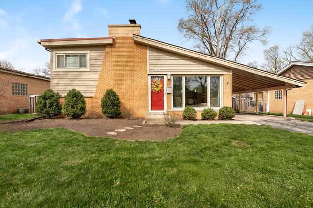 424 S Waterman Avenue, Arlington Heights, IL 60004 (MLS #10351576) :: Ryan Dallas Real Estate