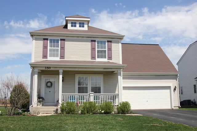 350 W Winchester Drive, Round Lake, IL 60073 (MLS #10351631) :: BNRealty