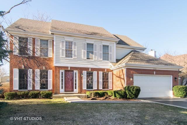 1293 N Lakeview Drive, Palatine, IL 60067 (MLS #10351667) :: Helen Oliveri Real Estate
