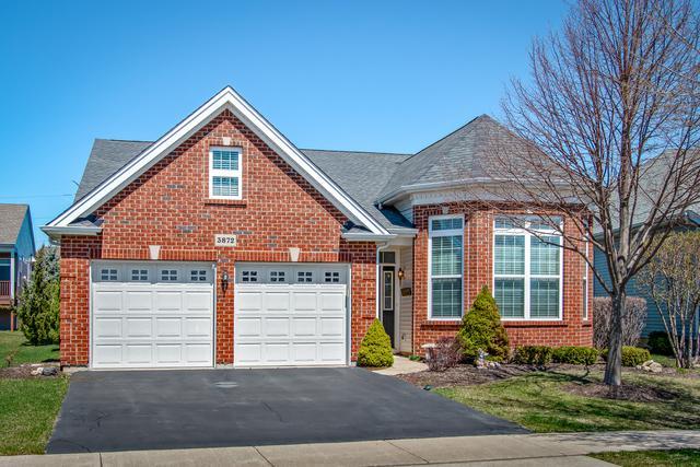 3872 Kingsmill Drive, Elgin, IL 60124 (MLS #10351769) :: Helen Oliveri Real Estate