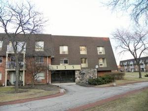 3 Villa Verde Drive #203, Buffalo Grove, IL 60089 (MLS #10351897) :: Helen Oliveri Real Estate