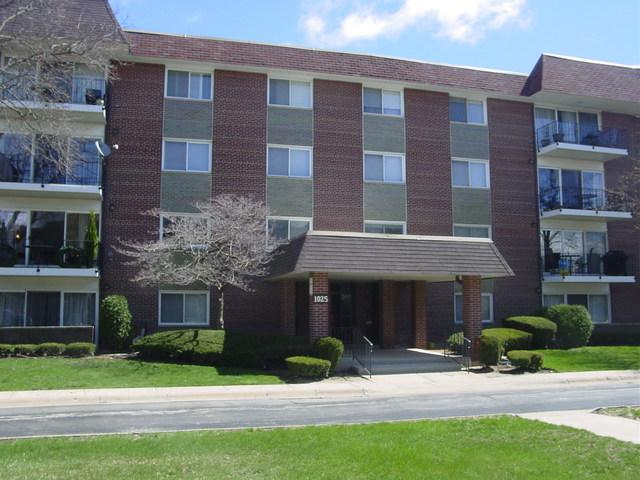 1025 S Fernandez Avenue 3E, Arlington Heights, IL 60005 (MLS #10351926) :: The Jacobs Group