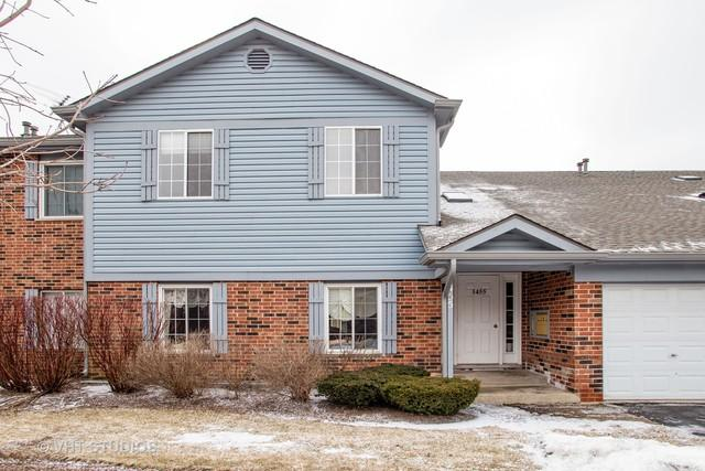 1455 Fairlane Drive #6, Schaumburg, IL 60193 (MLS #10351942) :: Century 21 Affiliated