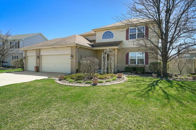 680 Sandpiper Drive, New Lenox, IL 60451 (MLS #10352178) :: The Wexler Group at Keller Williams Preferred Realty