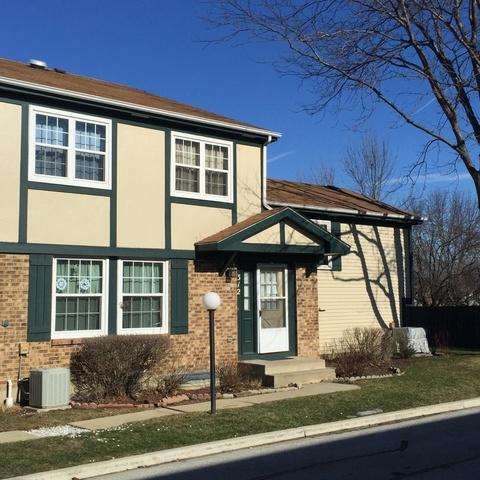 312 Plumwood Lane #312, Vernon Hills, IL 60061 (MLS #10352218) :: Helen Oliveri Real Estate