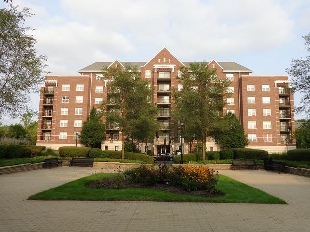 410 W Mahogany Court #407, Palatine, IL 60067 (MLS #10352291) :: The Jacobs Group