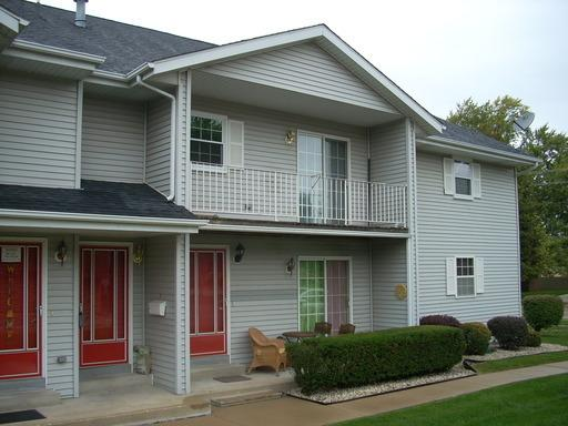 1118 Ingalls Avenue #15, Joliet, IL 60435 (MLS #10352449) :: BNRealty
