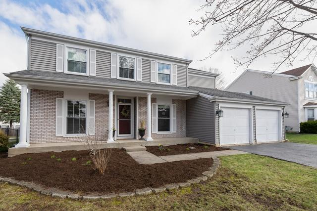 858 Belle Isle Lane, Vernon Hills, IL 60061 (MLS #10352518) :: Helen Oliveri Real Estate