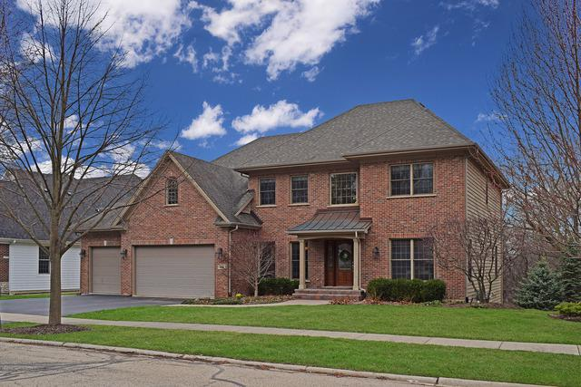 59 Beech Drive, Lake Zurich, IL 60047 (MLS #10352658) :: The Jacobs Group