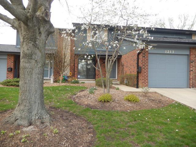 1213 Loughborough Court, Wheaton, IL 60189 (MLS #10352782) :: The Dena Furlow Team - Keller Williams Realty