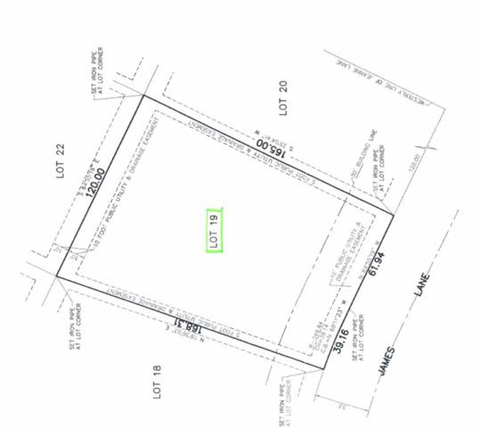 14300 James Lane, Homer Glen, IL 60491 (MLS #10352952) :: The Wexler Group at Keller Williams Preferred Realty
