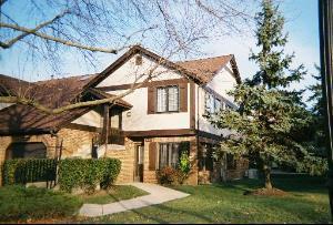 13327 S Oak Hills Parkway Villa2, Palos Heights, IL 60463 (MLS #10353296) :: Helen Oliveri Real Estate