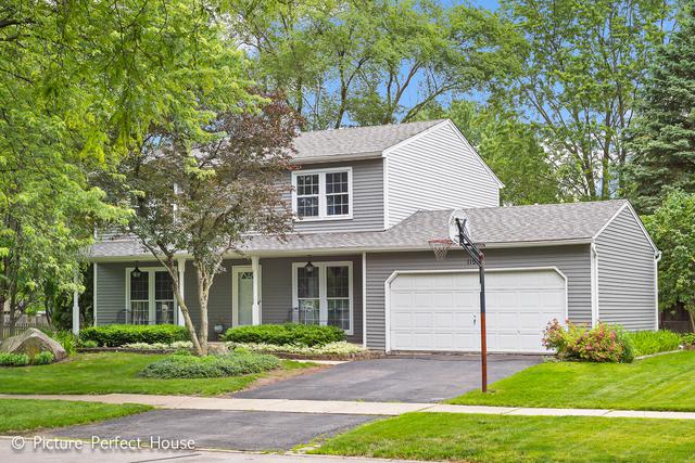 1106 Langley Circle, Naperville, IL 60563 (MLS #10353543) :: The Dena Furlow Team - Keller Williams Realty