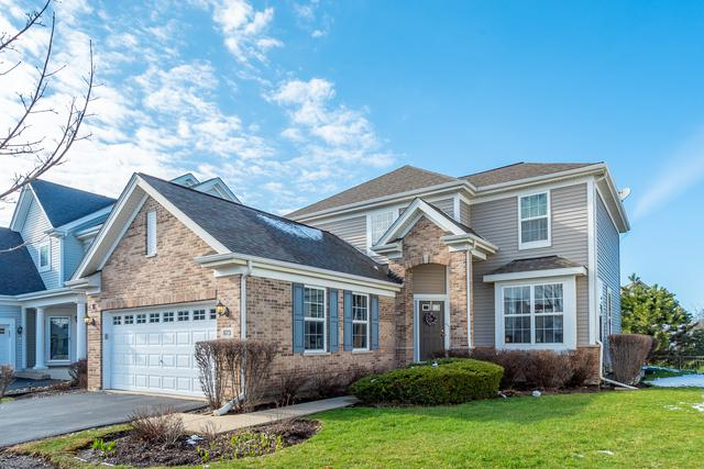 873 Savoy Court, Lake Zurich, IL 60047 (MLS #10353698) :: Angela Walker Homes Real Estate Group
