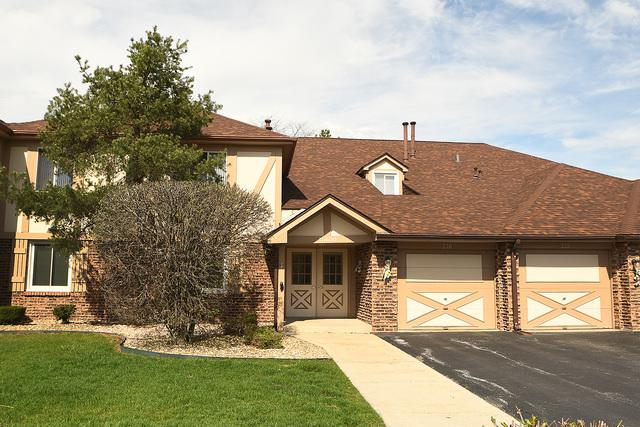15600 Orlan Brook Drive #215, Orland Park, IL 60462 (MLS #10353734) :: The Wexler Group at Keller Williams Preferred Realty