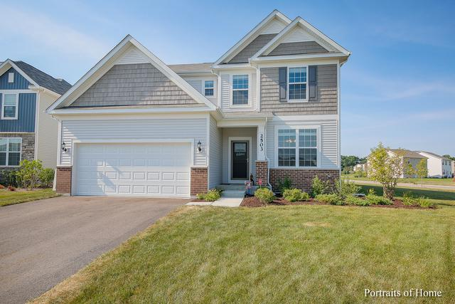 2503 Basin Trail Lane, Naperville, IL 60563 (MLS #10353793) :: The Dena Furlow Team - Keller Williams Realty