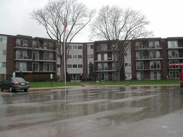 5540 Walnut Avenue 32B, Downers Grove, IL 60515 (MLS #10353973) :: The Dena Furlow Team - Keller Williams Realty