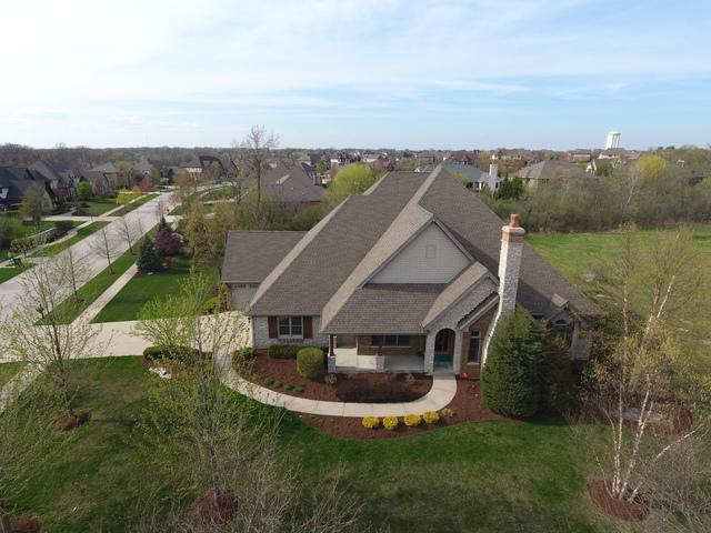 20012 Alison Trail, Mokena, IL 60448 (MLS #10354011) :: The Wexler Group at Keller Williams Preferred Realty