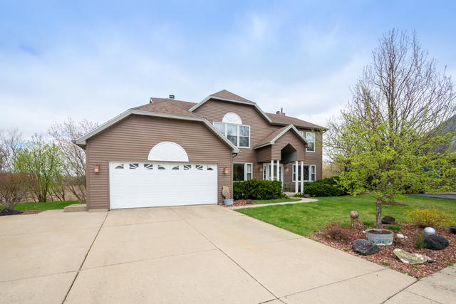 316 Sterbenz Court, Antioch, IL 60002 (MLS #10354725) :: Helen Oliveri Real Estate