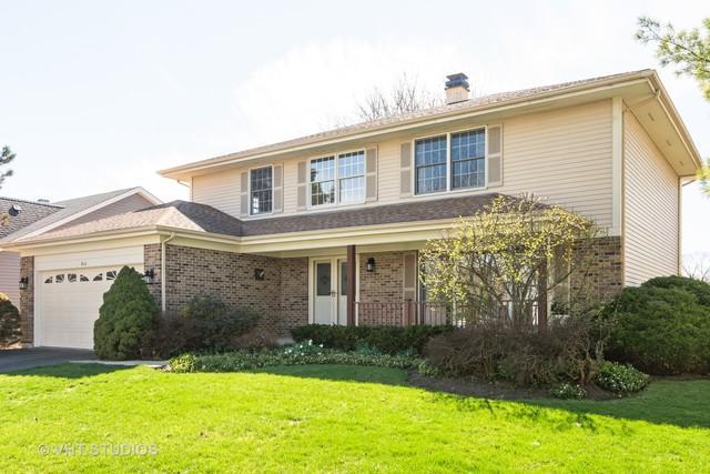 866 S Parkplace Drive, Palatine, IL 60067 (MLS #10354764) :: Helen Oliveri Real Estate