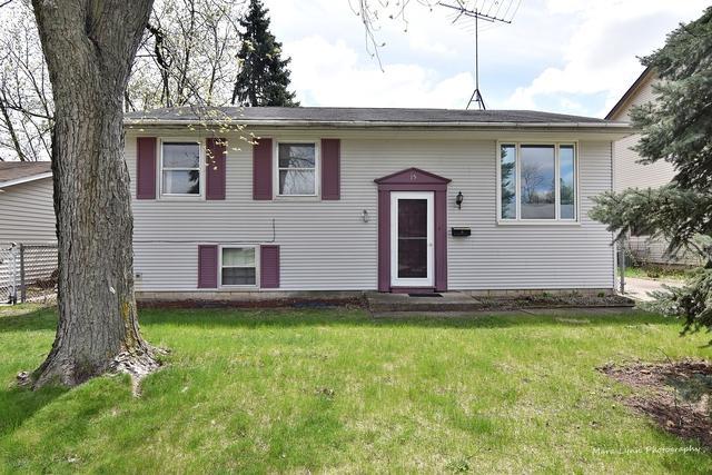 15 Elgin Avenue, Romeoville, IL 60446 (MLS #10355167) :: The Wexler Group at Keller Williams Preferred Realty