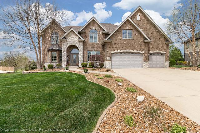 12100 Kent Trail, Mokena, IL 60448 (MLS #10355761) :: Leigh Marcus | @properties