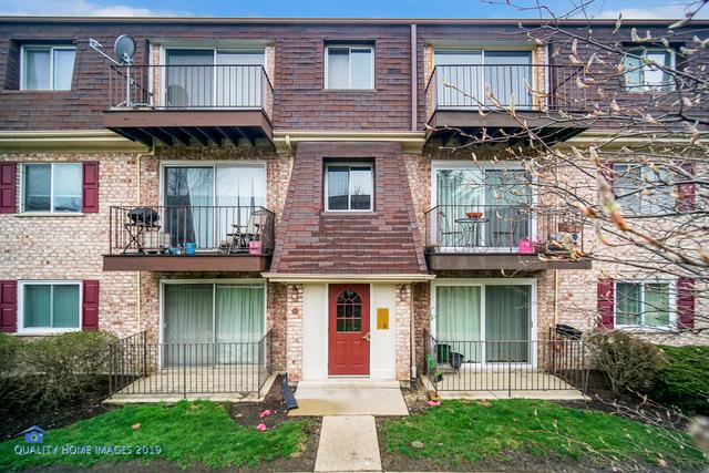 896 S Plum Grove Road #317, Palatine, IL 60067 (MLS #10355777) :: Leigh Marcus | @properties