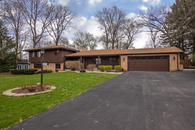 11073 Meadow Lark Lane, Belvidere, IL 61008 (MLS #10355912) :: Leigh Marcus | @properties