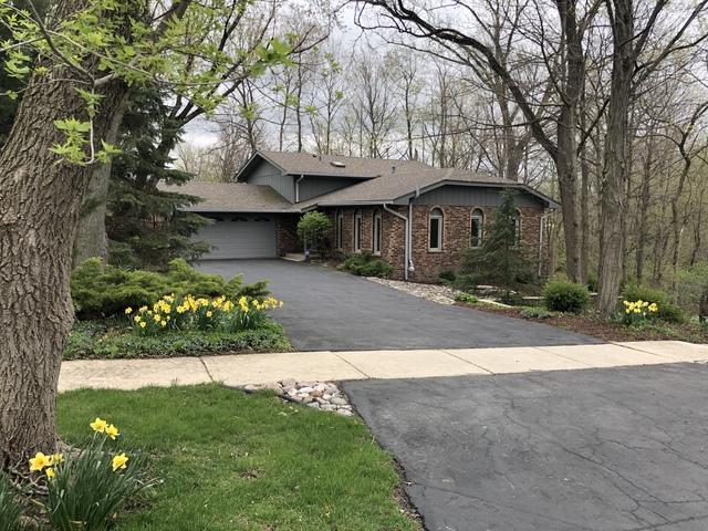 741 Oakwood Drive, Frankfort, IL 60423 (MLS #10355961) :: Leigh Marcus | @properties