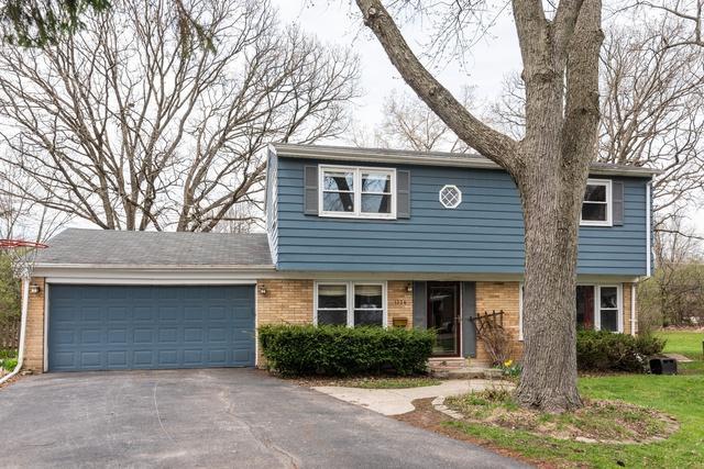 1234 Castle Drive, Glenview, IL 60025 (MLS #10355996) :: Ryan Dallas Real Estate