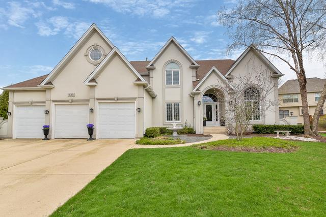 935 Burnham Court, Aurora, IL 60502 (MLS #10356146) :: Helen Oliveri Real Estate