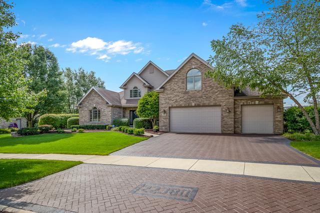 22380 Prairie Trail Lane, Frankfort, IL 60423 (MLS #10356298) :: Leigh Marcus | @properties