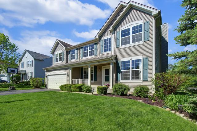 2645 W Autumn Drive, Round Lake, IL 60073 (MLS #10356366) :: Baz Realty Network | Keller Williams Elite