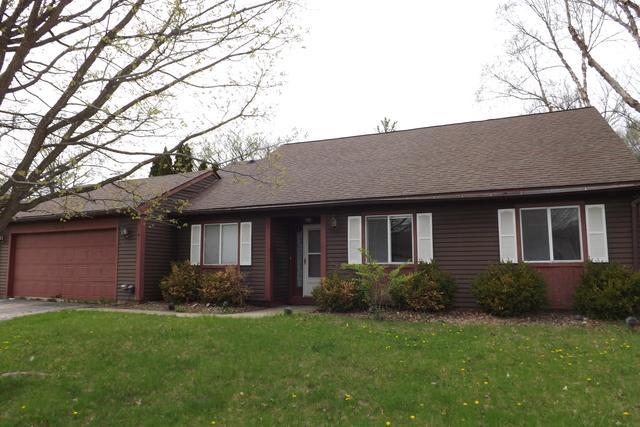 2916 Evergreen Lane, Aurora, IL 60502 (MLS #10356969) :: Ryan Dallas Real Estate