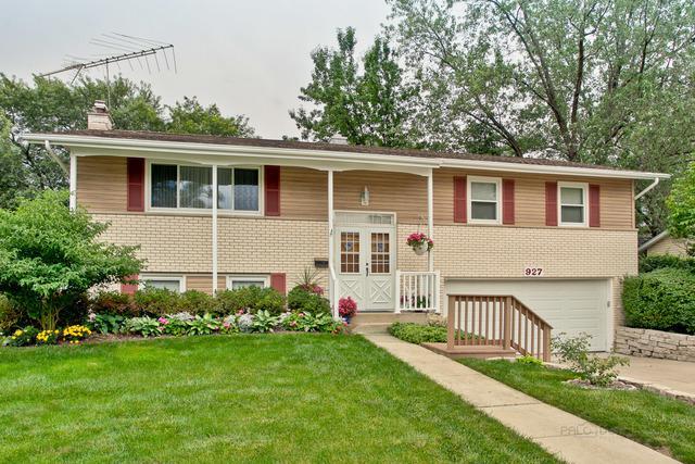 927 E Slayton Drive, Palatine, IL 60074 (MLS #10357115) :: Helen Oliveri Real Estate
