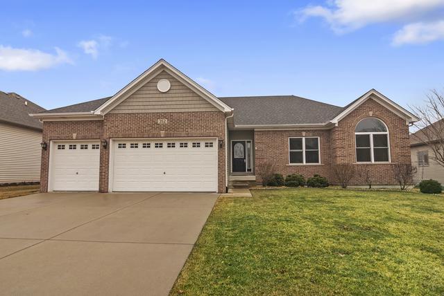 352 Andover Drive, Oswego, IL 60543 (MLS #10357335) :: Helen Oliveri Real Estate