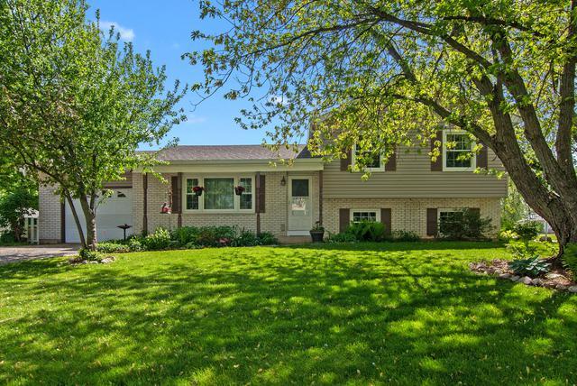 117 Kristine Street, Oswego, IL 60543 (MLS #10358923) :: Ani Real Estate