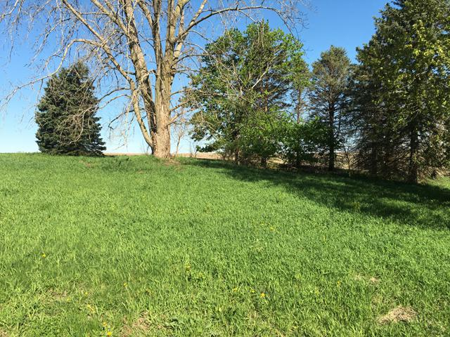 Lot 9 W Fish N Fun Road, Mcnabb, IL 61335 (MLS #10359967) :: Baz Realty Network | Keller Williams Elite
