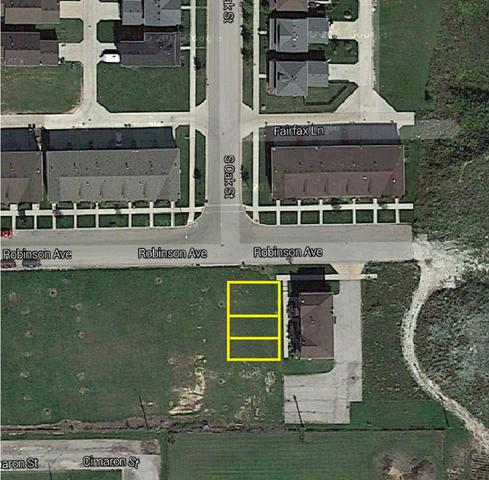 Lot 109 Robinson Avenue, Cortland, IL 60112 (MLS #10360629) :: John Lyons Real Estate