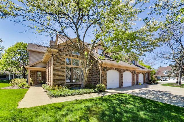 247 Willow Parkway, Buffalo Grove, IL 60089 (MLS #10361819) :: Helen Oliveri Real Estate