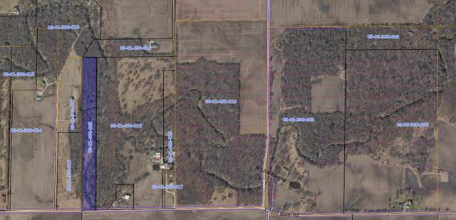 2600 North Road, Cornell, IL 61319 (MLS #10362105) :: Property Consultants Realty