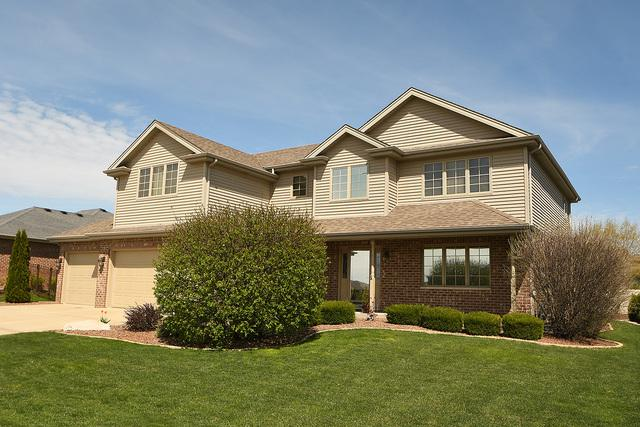 738 Teal Drive, New Lenox, IL 60451 (MLS #10362576) :: Berkshire Hathaway HomeServices Snyder Real Estate