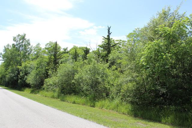 Lot 27 Pinewood Drive - Photo 1