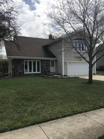 857 Lombard Drive, Crystal Lake, IL 60014 (MLS #10366258) :: Berkshire Hathaway HomeServices Snyder Real Estate