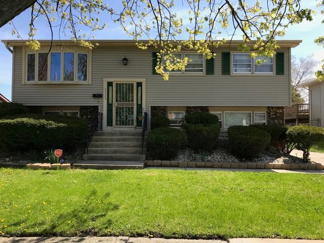 20043 Lakewood Avenue, Lynwood, IL 60411 (MLS #10368842) :: Century 21 Affiliated