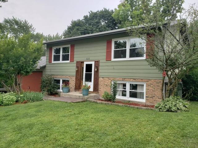 825 Revere Road, South Elgin, IL 60177 (MLS #10371614) :: The Wexler Group at Keller Williams Preferred Realty