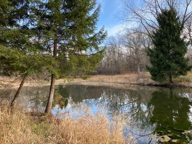 00 Shamrock Lane, Woodstock, IL 60098 (MLS #10371990) :: BN Homes Group
