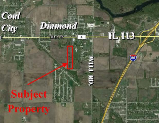 100 Border Street, Diamond, IL 60416 (MLS #10372471) :: Ryan Dallas Real Estate