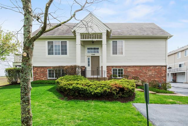 3340 Cameron Drive, Elgin, IL 60124 (MLS #10373019) :: Berkshire Hathaway HomeServices Snyder Real Estate