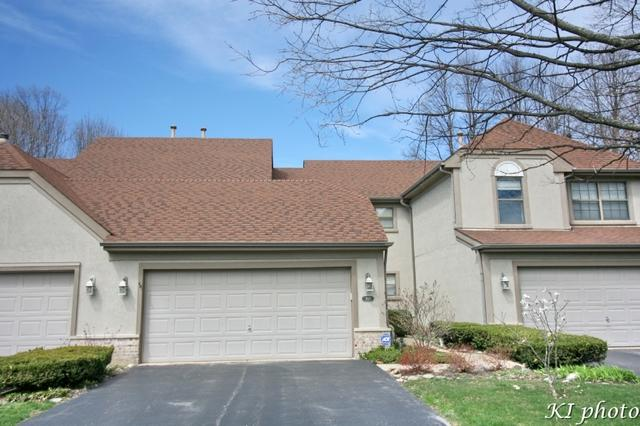 203 Bright Ridge Drive, Schaumburg, IL 60194 (MLS #10374117) :: Berkshire Hathaway HomeServices Snyder Real Estate